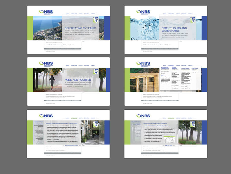 nbs_websitePages